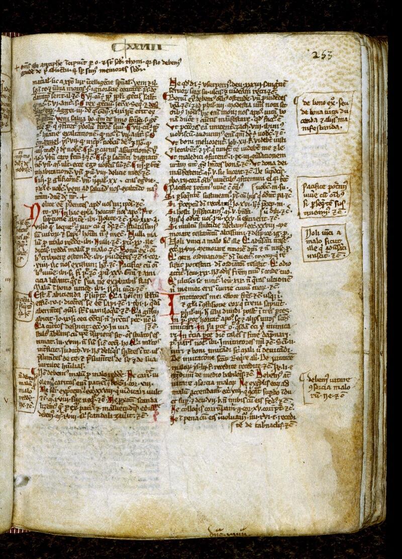 Angers, Bibl. mun., ms. 0249, p. 253