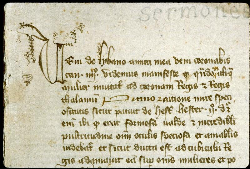 Angers, Bibl. mun., ms. 0254, f. 001 - vue 3