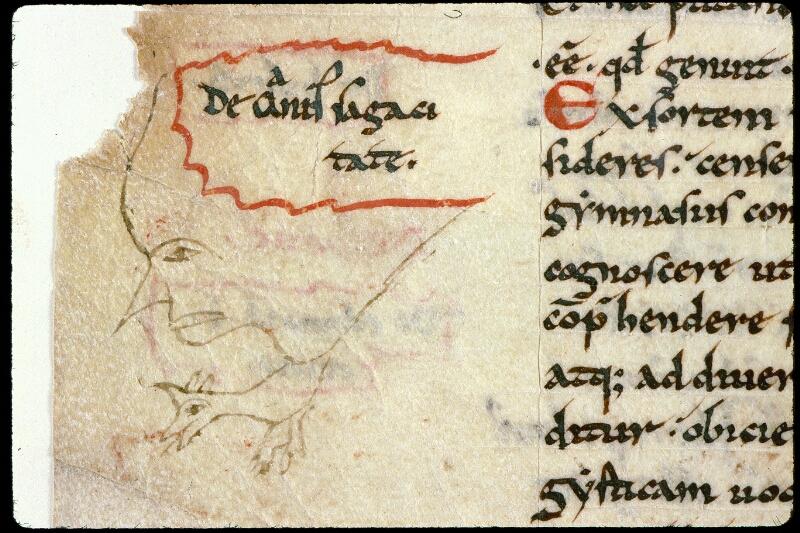 Angers, Bibl. mun., ms. 0293, f. 129v