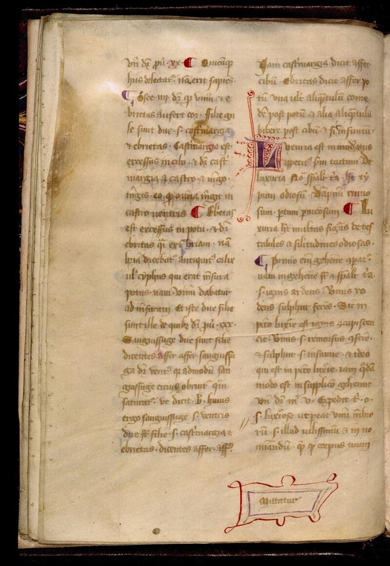 Angers, Bibl. mun., ms. 0313, f. 016v