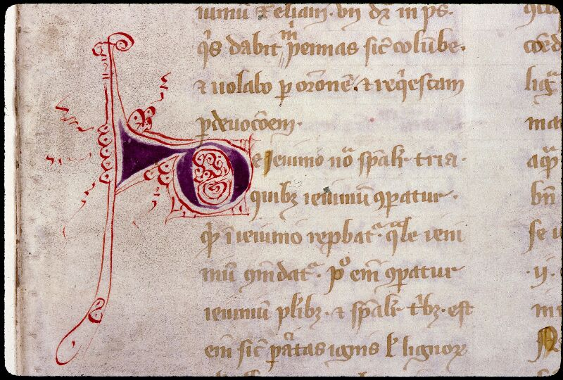 Angers, Bibl. mun., ms. 0313, f. 028v