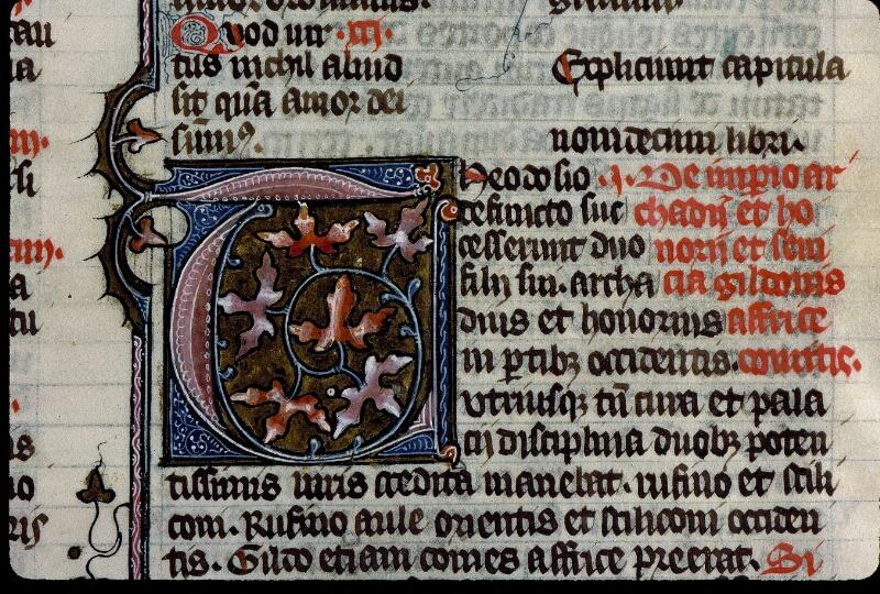 Angers, Bibl. mun., ms. 0315, f. 030 - vue 2