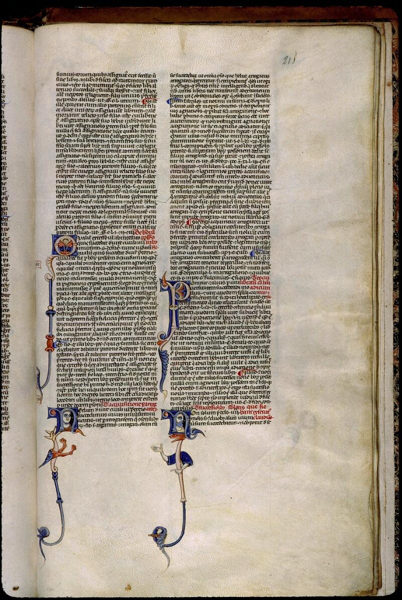 Angers, Bibl. mun., ms. 0338, f. 218 - vue 1