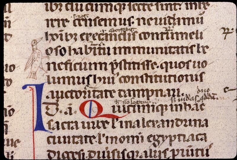 Angers, Bibl. mun., ms. 0339, f. 019v