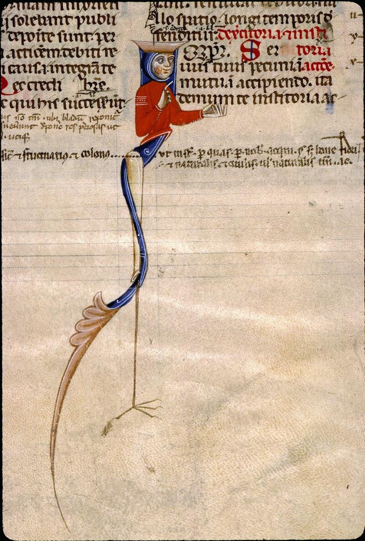Angers, Bibl. mun., ms. 0339, f. 110