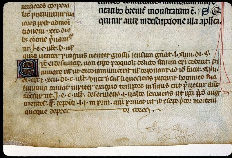 Angers, Bibl. mun., ms. 0372, f. 035v - vue 6