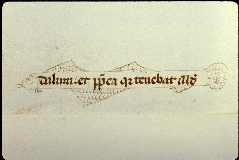 Angers, Bibl. mun., ms. 0373, f. 082v - vue 2