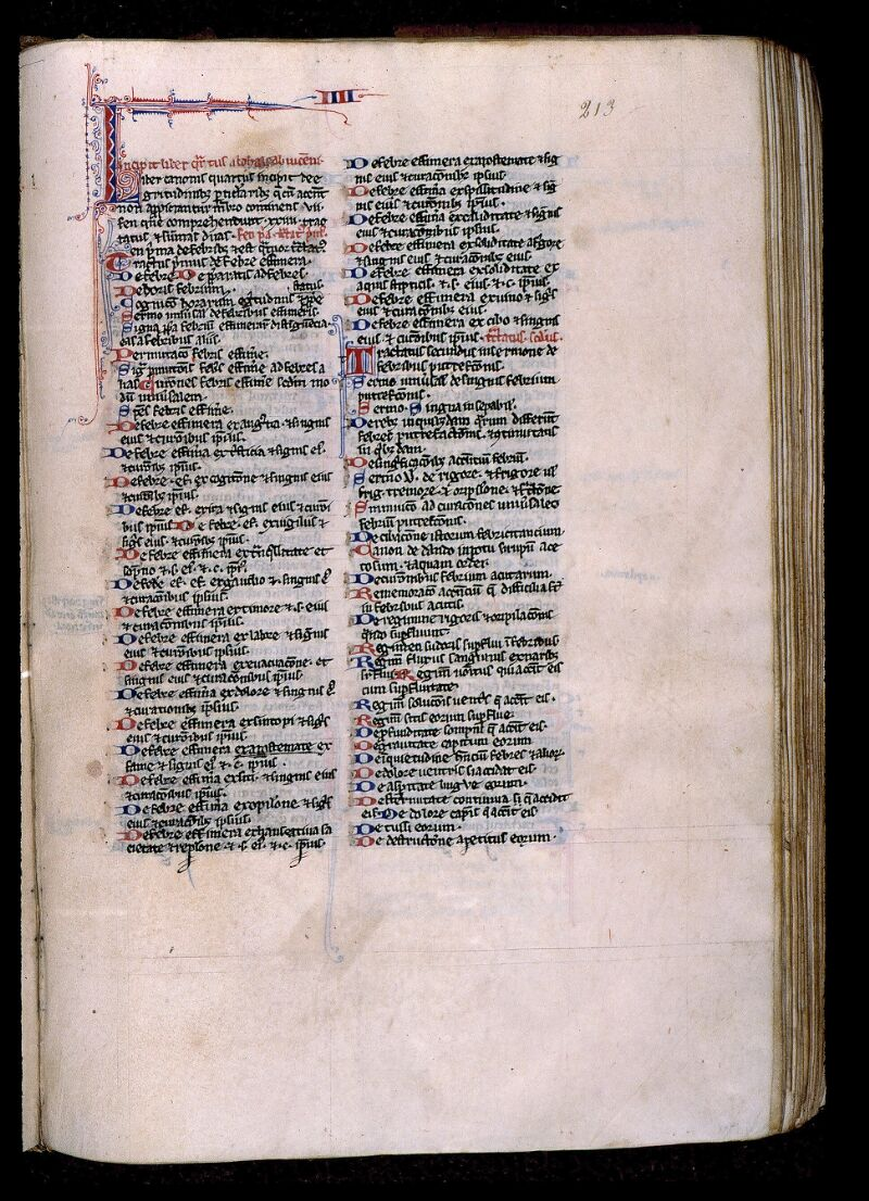 Angers, Bibl. mun., ms. 0458, f. 213