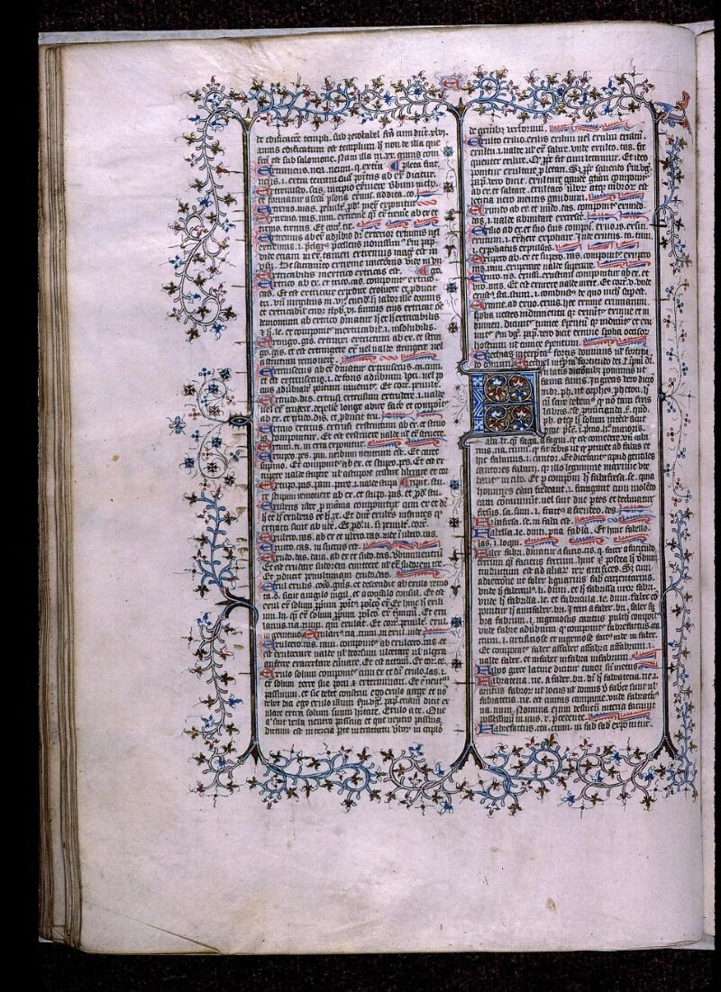 Angers, Bibl. mun., ms. 0496, f. 176v - vue 1