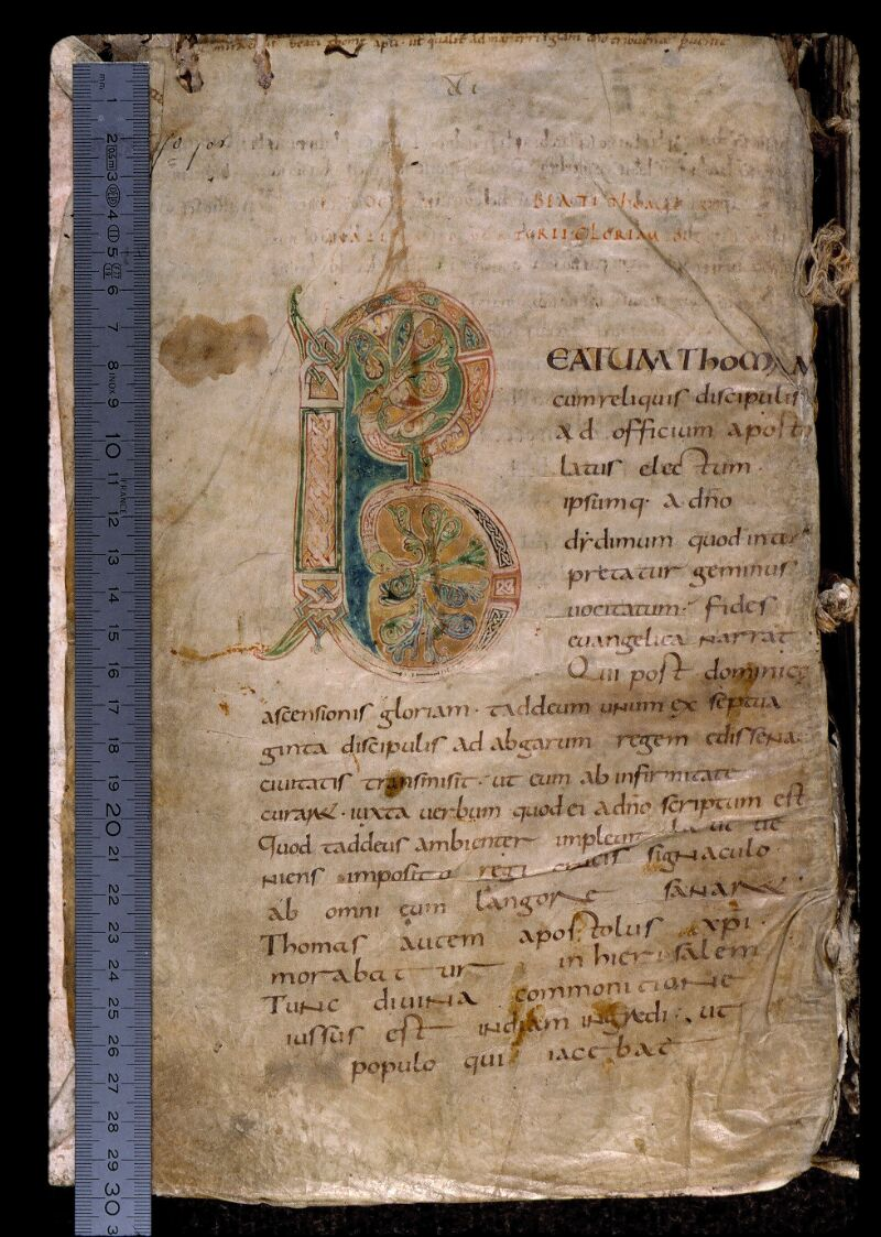 Angers, Bibl. mun., ms. 0801, f. 001 - vue 1