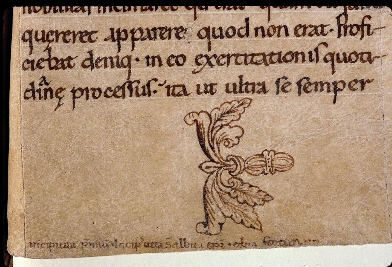 Angers, Bibl. mun., ms. 0804, f. 096 - vue 2