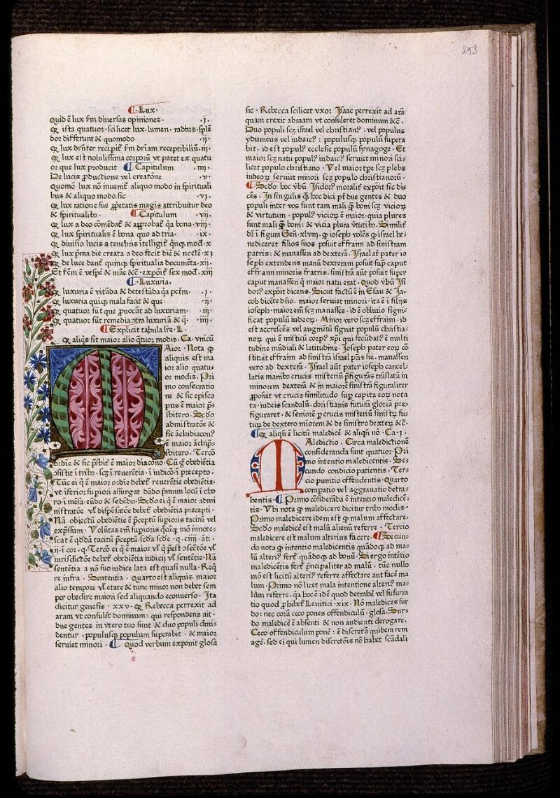 Angers, Bibl. mun., T 0718, t. I, f. 253 - vue 1