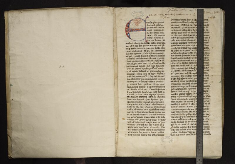 ARRAS, Bibliothèque municipale, 0047 (0010), vol. 2, garde - f. 001r reglé