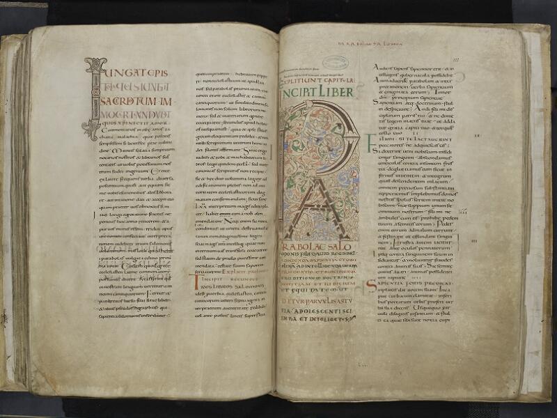 ARRAS, Bibliothèque municipale, 0435 (0559), vol. 2, f. 132v - 133r