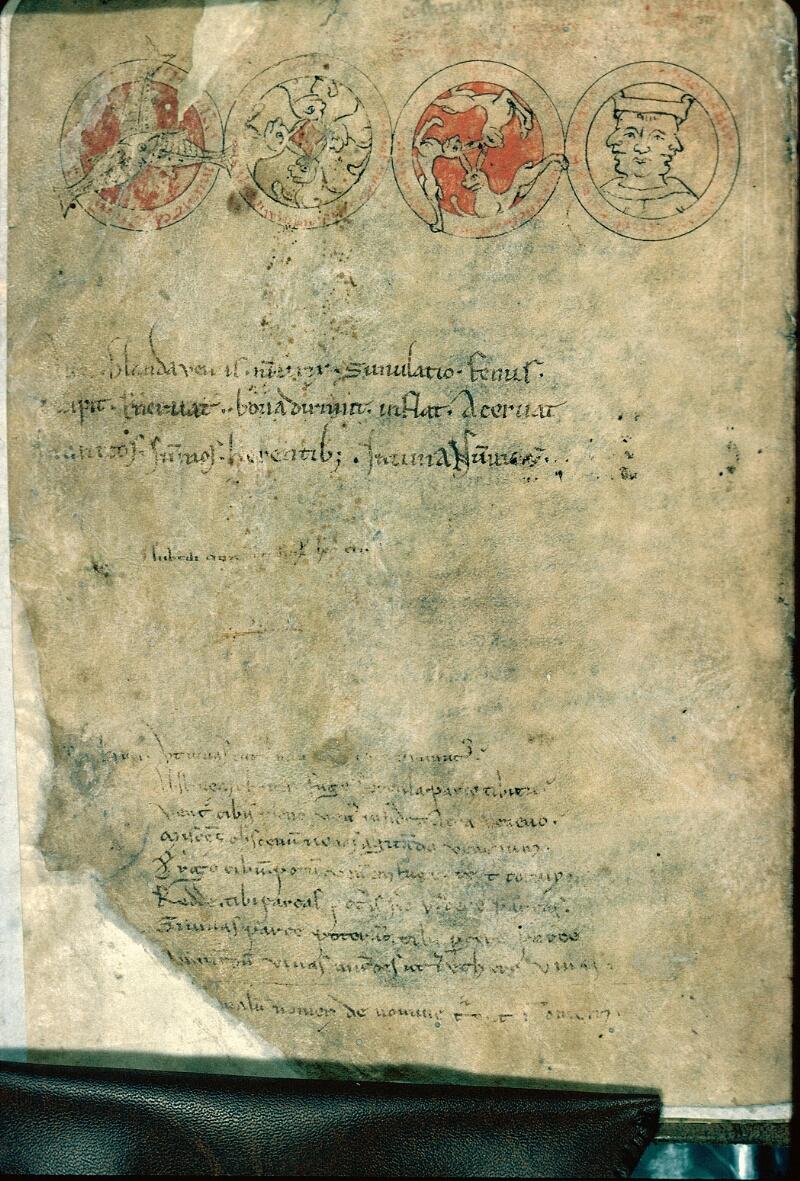Auxerre, Bibl. mun., ms. 0007, f. 001v - vue 1