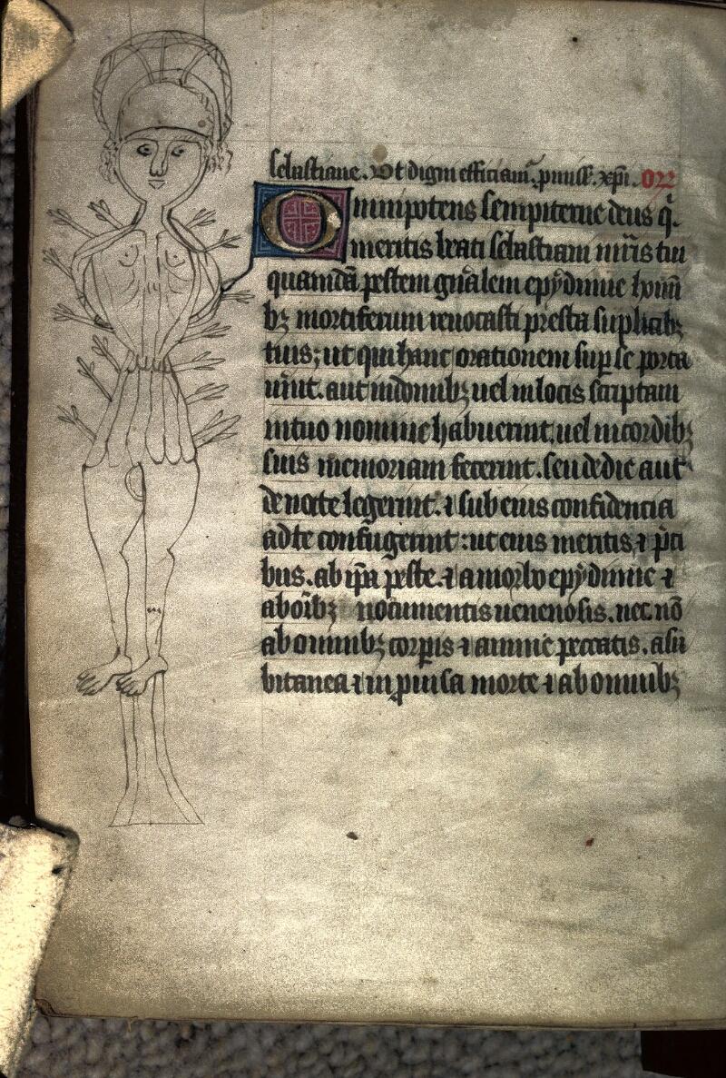 Avranches, Bibl. mun., ms. 0045, f. 117v