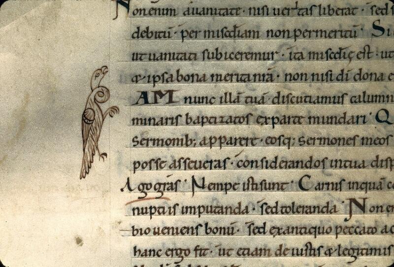 Avranches, Bibl. mun., ms. 0091, f. 153v - vue 2