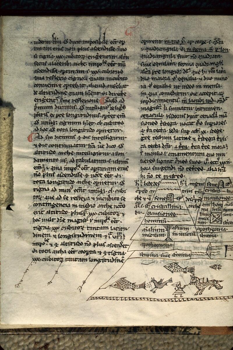 Avranches, Bibl. mun., ms. 0117, f. 014v
