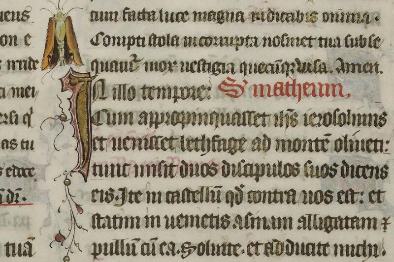 Caen, Musée, Coll. Mancel ms. 0237, f. 001 - vue 3