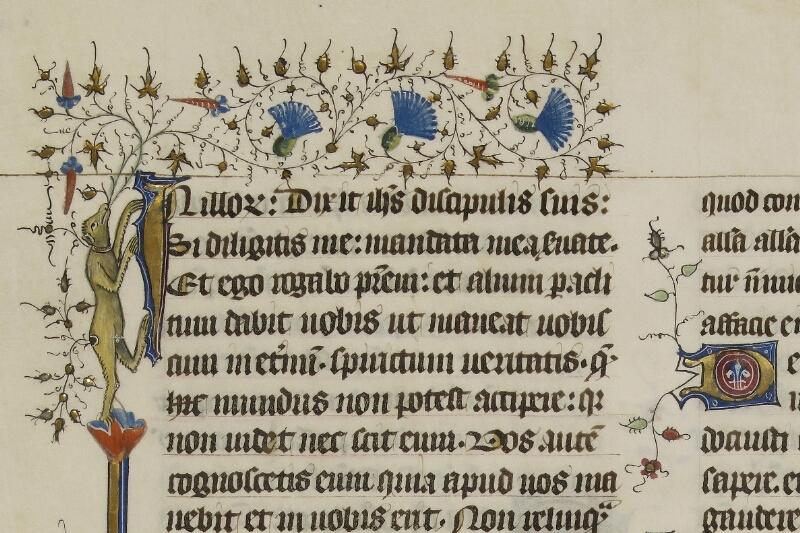 Caen, Musée, Coll. Mancel ms. 0237, f. 095 - vue 3