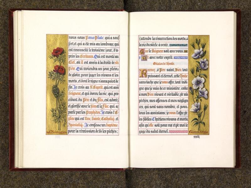 p. 036 - 037, p. 036 - 037