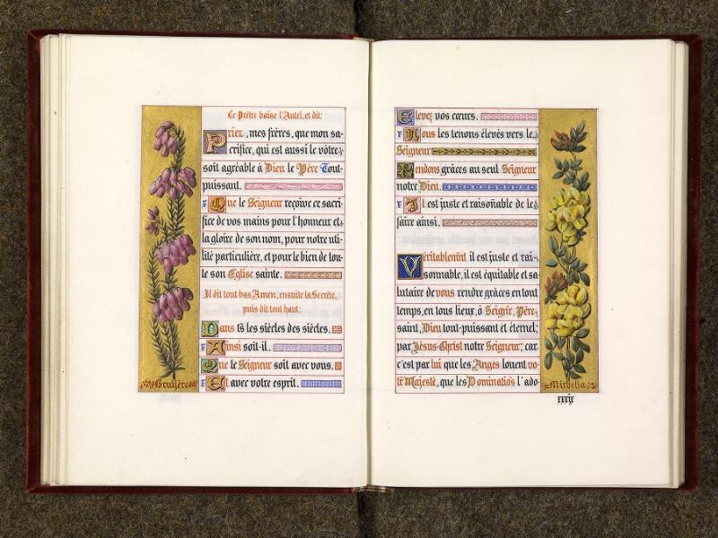 p. 042 - 043, p. 042 - 043