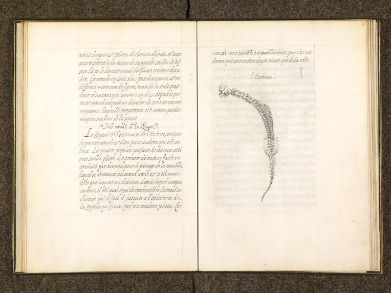 CHANTILLY, Bibliothèque du château, 0337 (1482), f. 018v - 019