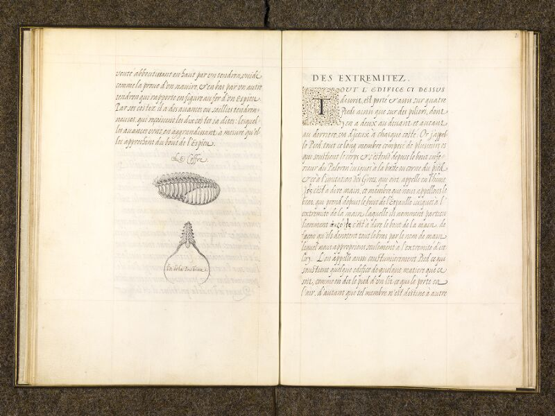 CHANTILLY, Bibliothèque du château, 0337 (1482), f. 020v - 021
