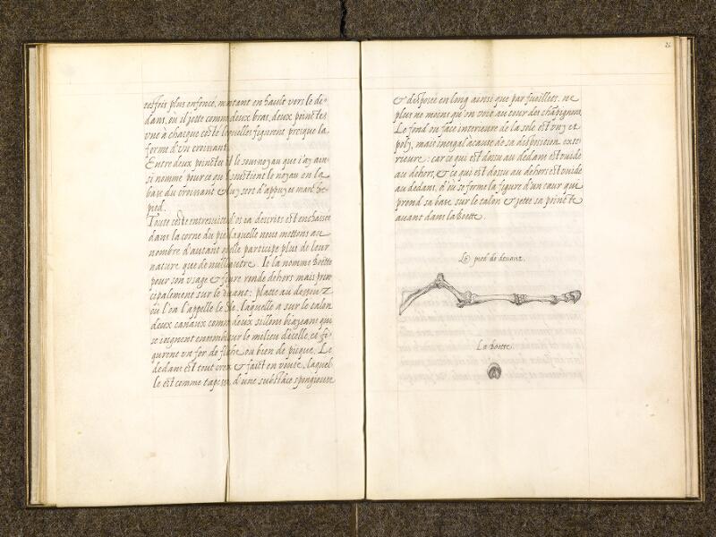 CHANTILLY, Bibliothèque du château, 0337 (1482), f. 025v - 026