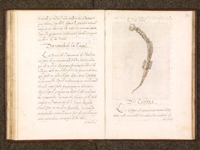 CHANTILLY, Bibliothèque du château, 0338 (0742), f. 019v - 020