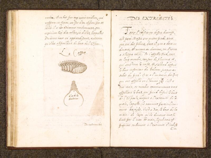 CHANTILLY, Bibliothèque du château, 0338 (0742), f. 021v - 022