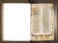 https://iiif.irht.cnrs.fr/iiif/France/Chantilly/Bibliotheque_du_chateau/M601415401_MS0597/DEPOT/M601415401_MS0597_0005/full/200,/0/default.jpg