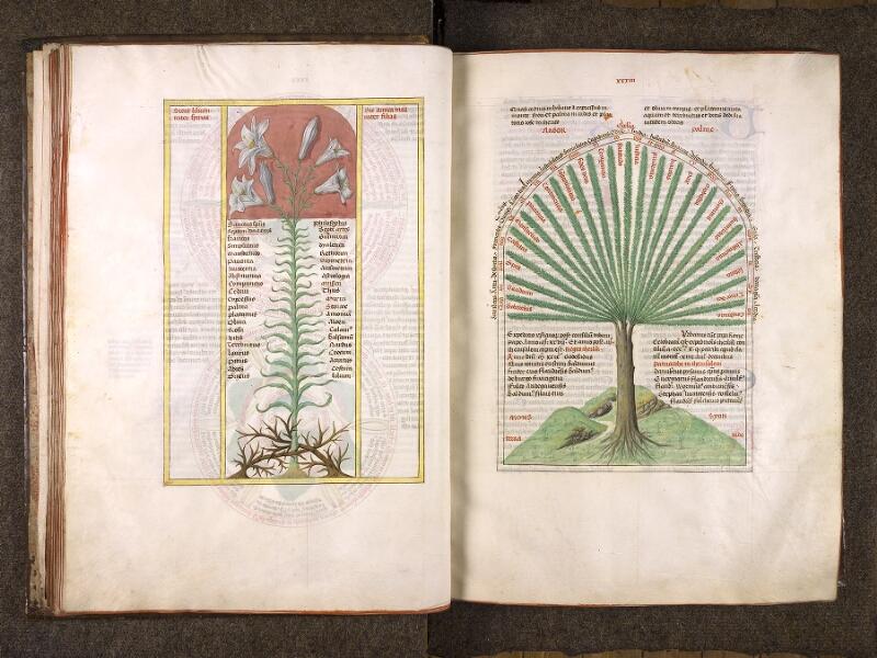 CHANTILLY, Bibliothèque du château, 0724 (1596), f. 032v - 033