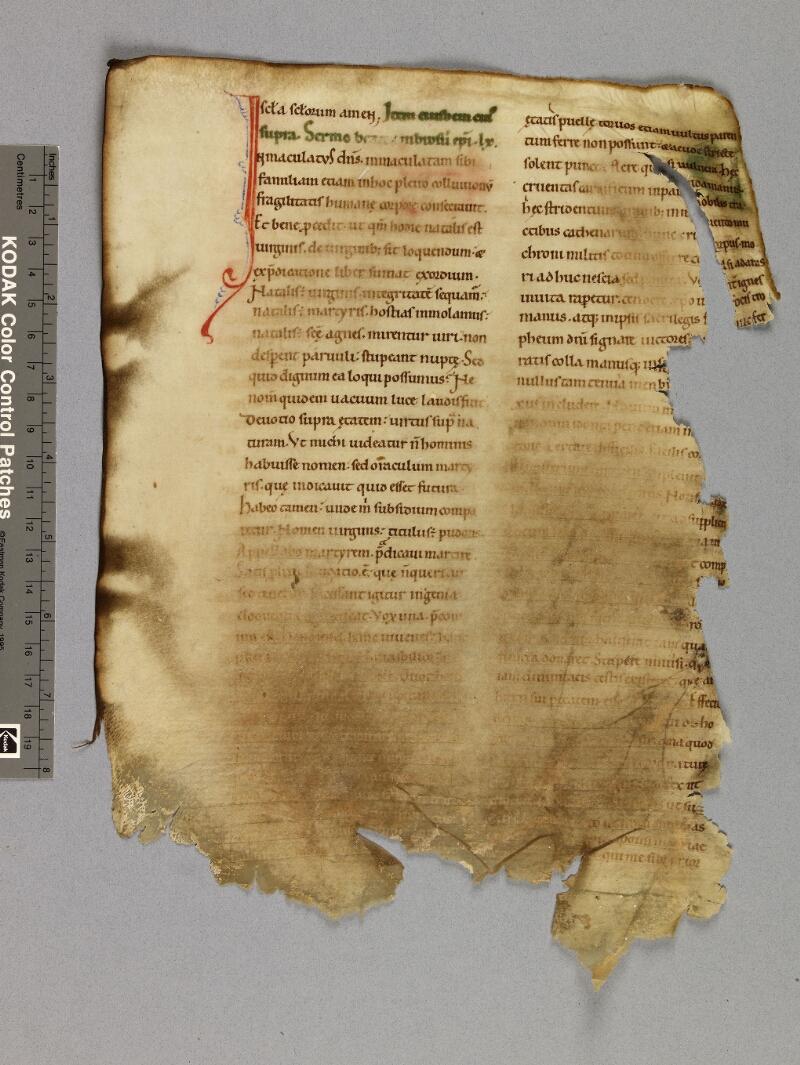 CHARTRES, Bibliothèque municipale, 0011 (0022), f. 019v