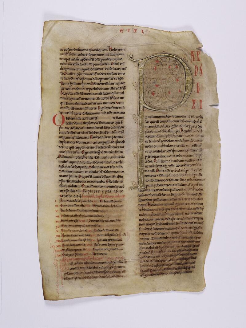 CHARTRES, Bibliothèque municipale, 0139 (0157), vol. 2, f. 213v