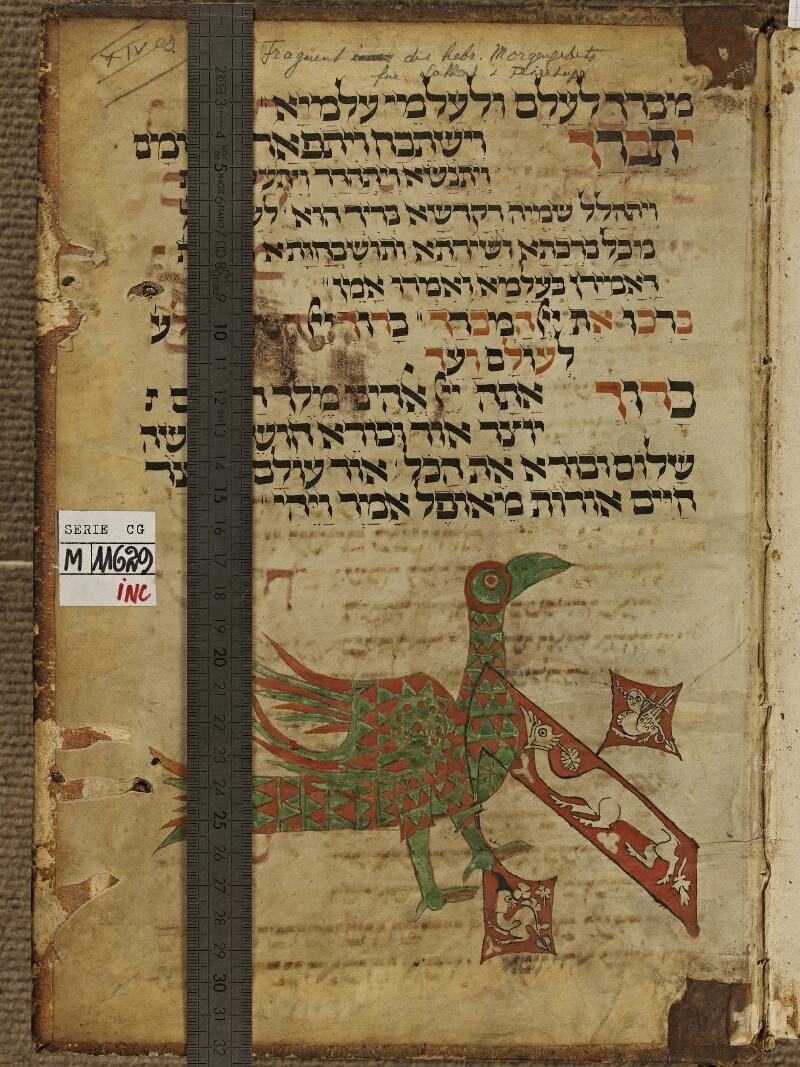 Colmar, Bibl. mun., inc. CG 11629,  - vue 1