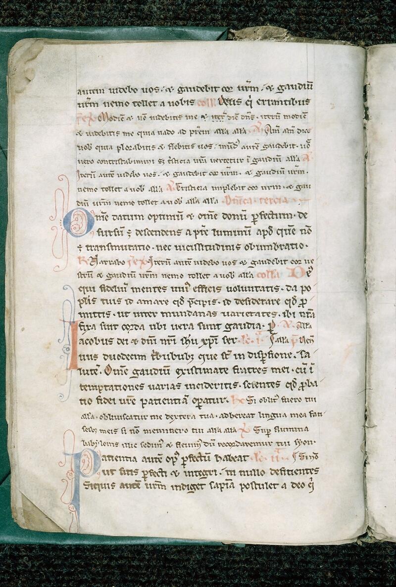 Evreux, Bibl. mun., ms. lat. 031, f. 010v - vue 2