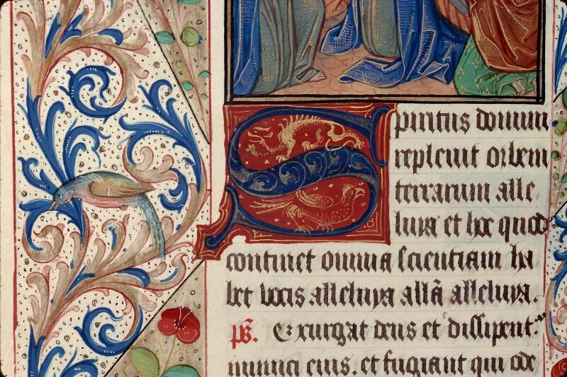 Evreux, Bibl. mun., ms. lat. 099, f. 028v - vue 3