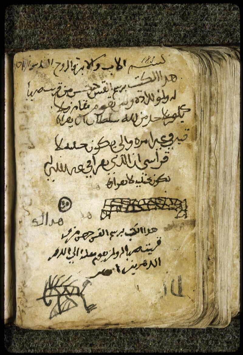 Lyon, Bibl. mun., ms. 0021, f. 203v