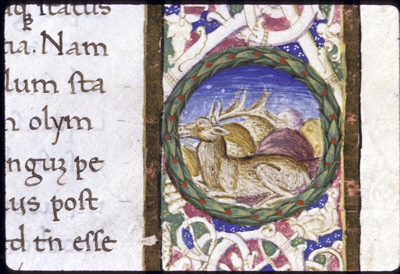Lyon, Bibl. mun., ms. 0166, f. 001 - vue 4