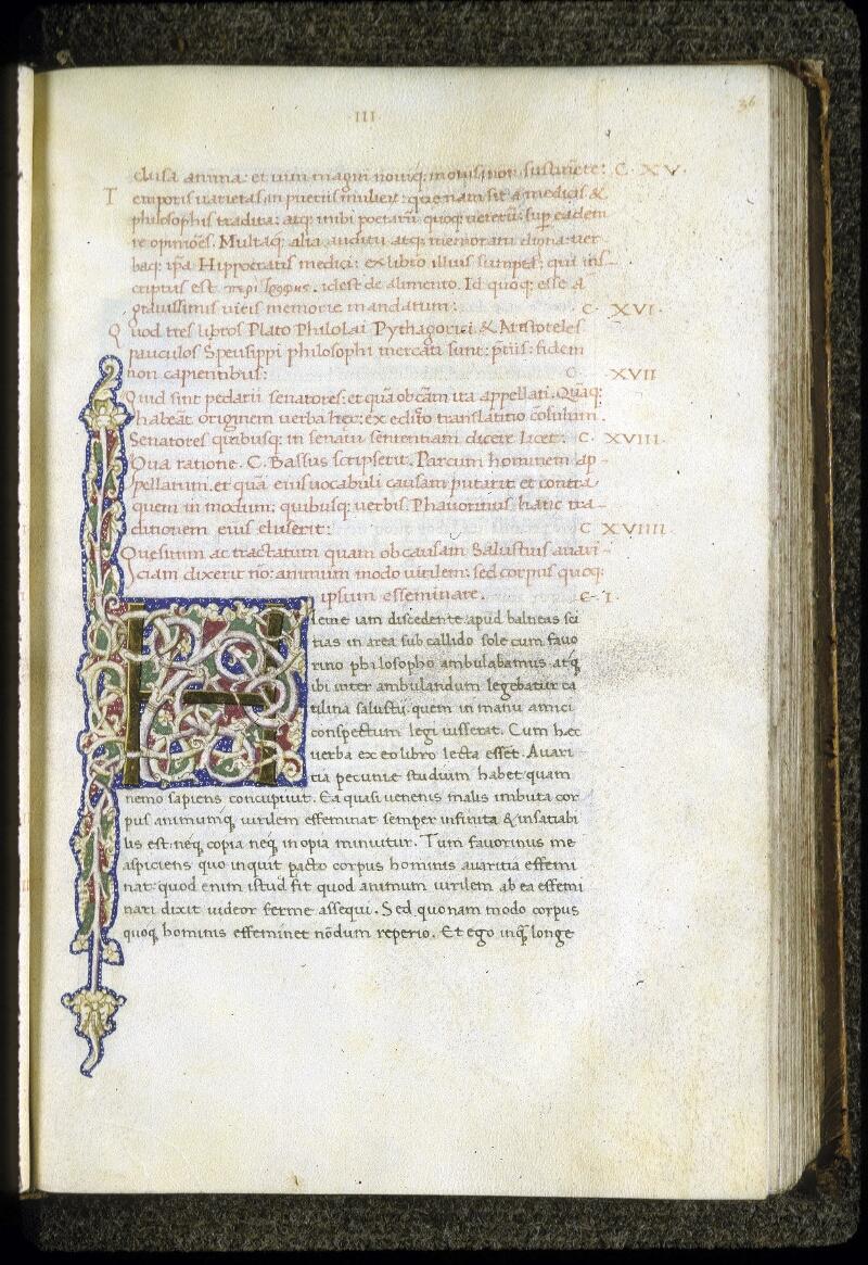 Lyon, Bibl. mun., ms. 0166, f. 036