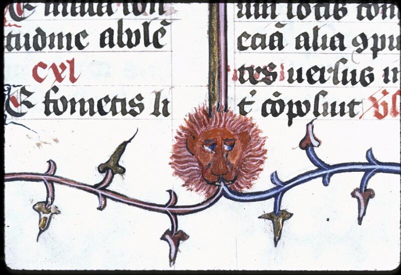 Lyon, Bibl. mun., ms. 0183, f. 170v - vue 2