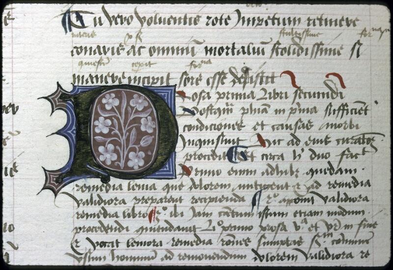 Lyon, Bibl. mun., ms. 0245, f. 021v