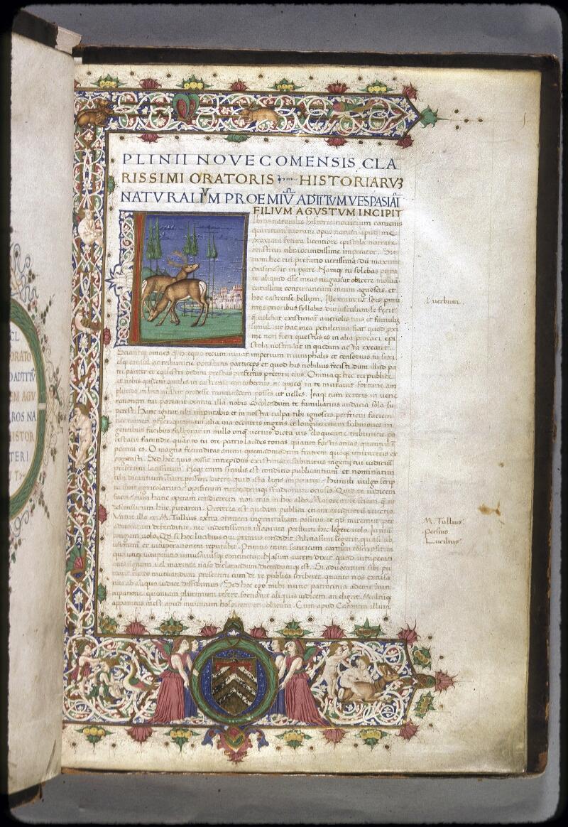 Lyon, Bibl. mun., ms. 0309, f. 001 - vue 1