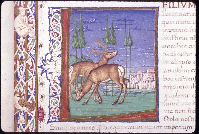 Lyon, Bibl. mun., ms. 0309, f. 001 - vue 2