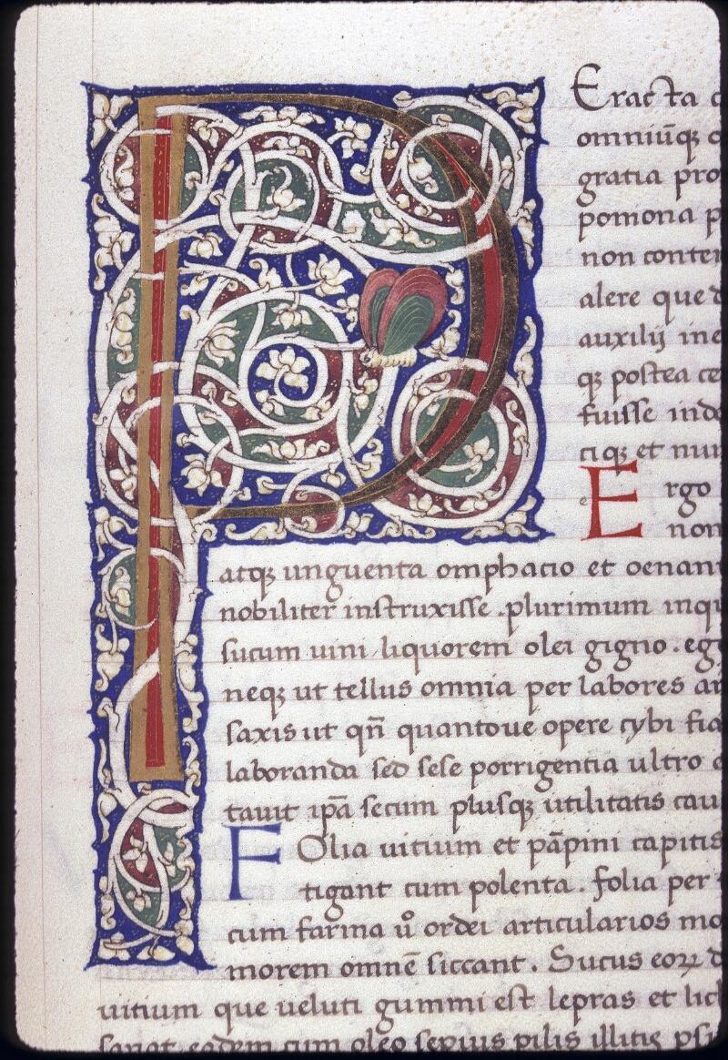 Lyon, Bibl. mun., ms. 0309, f. 222