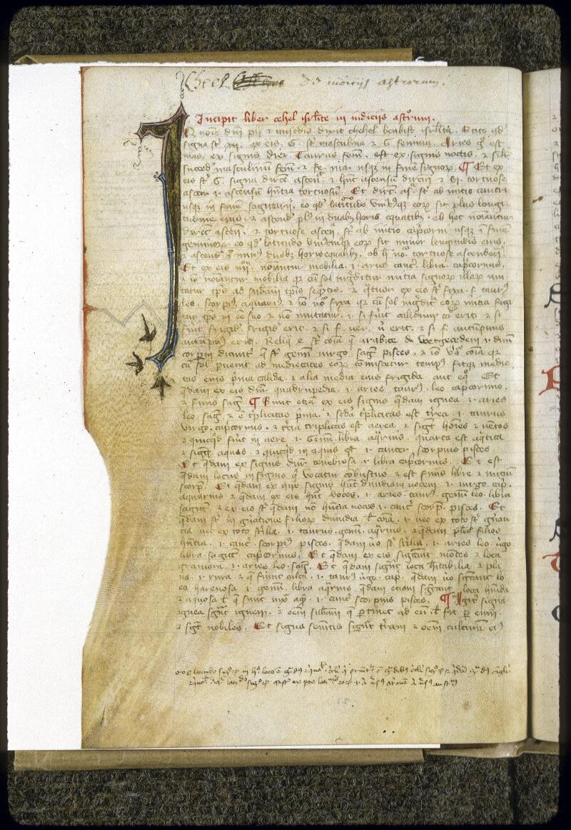 Lyon, Bibl. mun., ms. 0328, f. 021v - vue 2