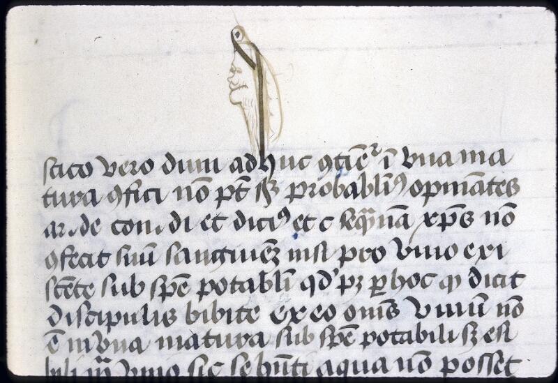 Lyon, Bibl. mun., ms. 0344, f. 220