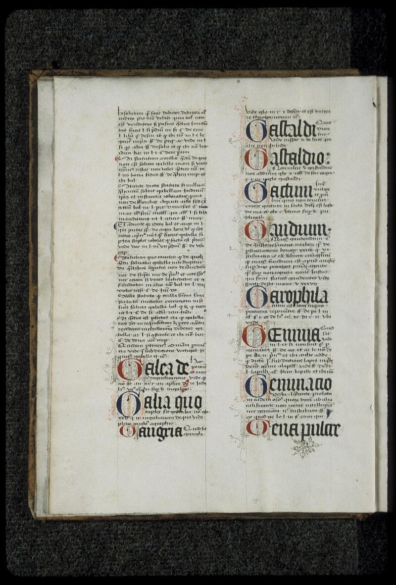 Lyon, Bibl. mun., ms. 0392, f. 002v - vue 2