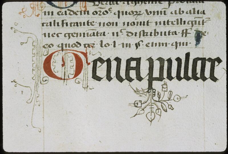 Lyon, Bibl. mun., ms. 0392, f. 002v - vue 3